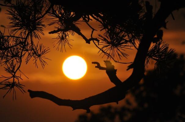 winter_sunset-396633_1920