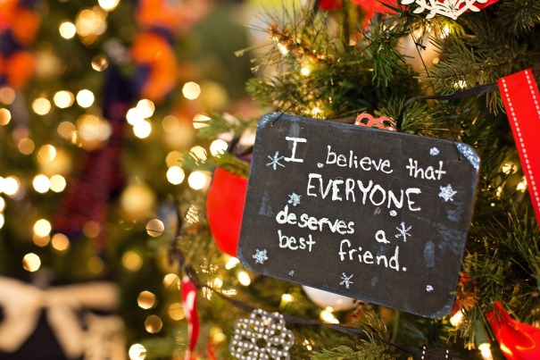BEST_FRIEND_christmas-ornament-1042543_1920
